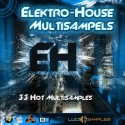 Electro-House Multi Samples
