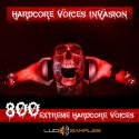 Hardcore Voices Invasion
